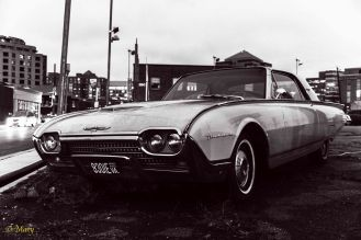 1962 Ford Thunderbird - from the side